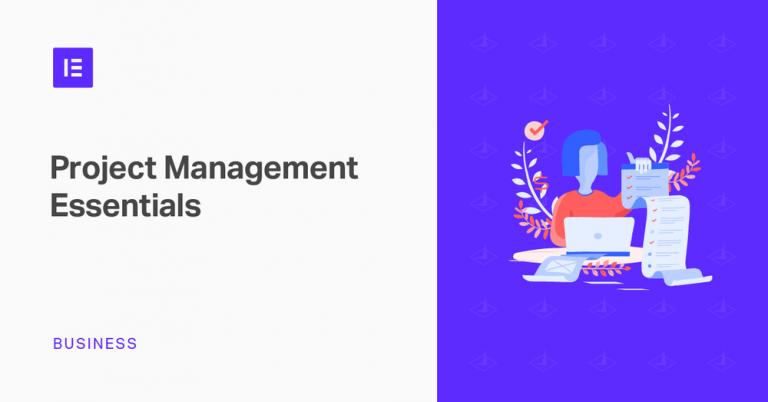 Website Project Management