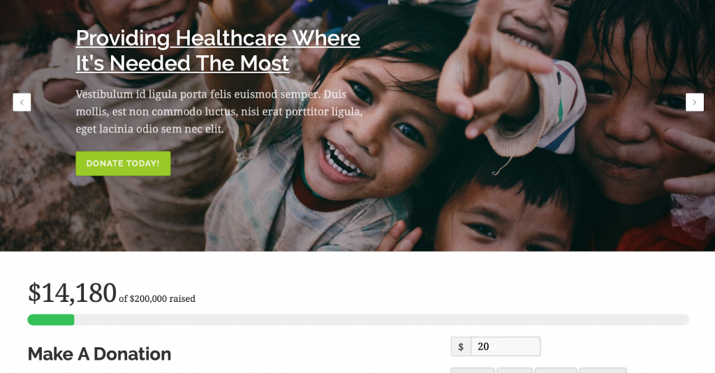 nonprofit healthcare template
