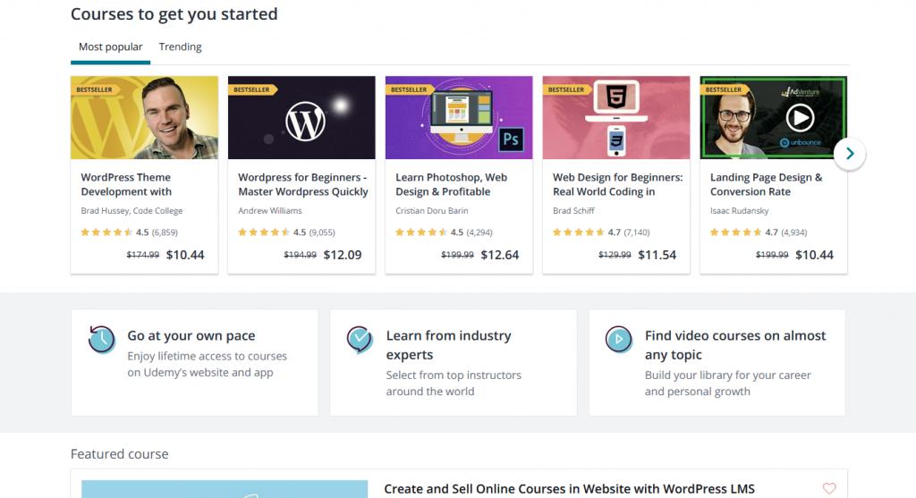 Best Online Courses For Web Design Elementor