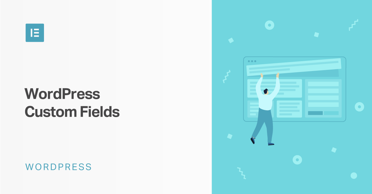The Full Information to WordPress Customized Fields