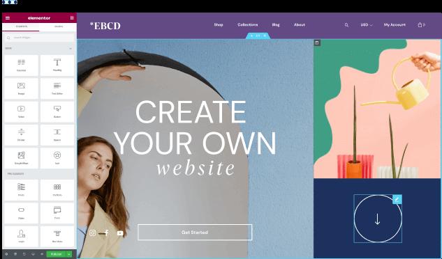 Elementor wordpress designer plugin