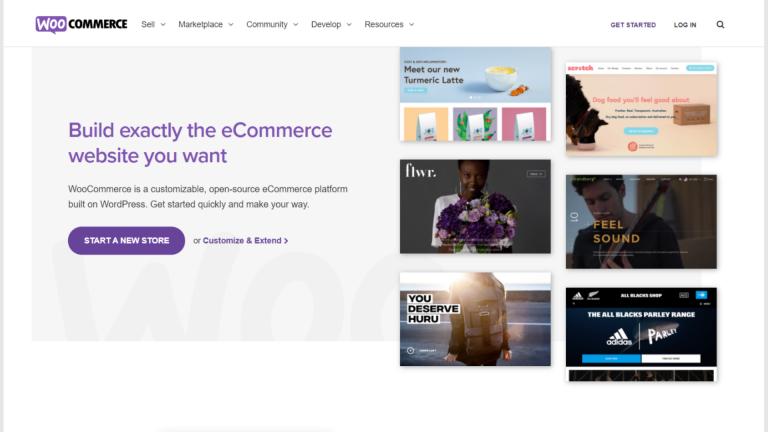 woocommerce-website