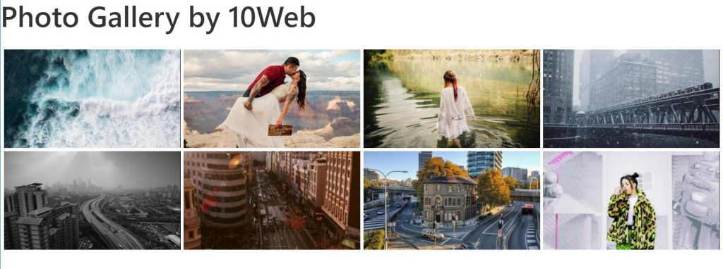 10web image gallery plugin
