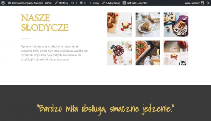 Polish Homepage - 7